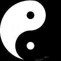 Tai Chi & Qigong Classes